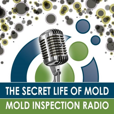 Mold Inspection Radio